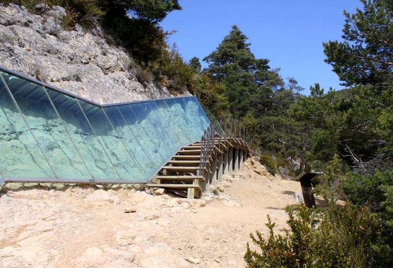 Los sirenios del Col des Leques, hace 40 millones de años