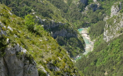 Days of rafting and water levels on the Verdon
