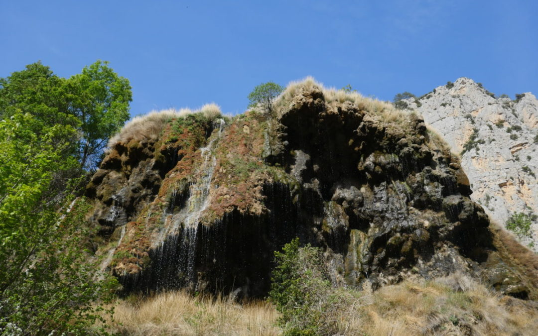 Saint Maurin, la réserve naturelle régionale