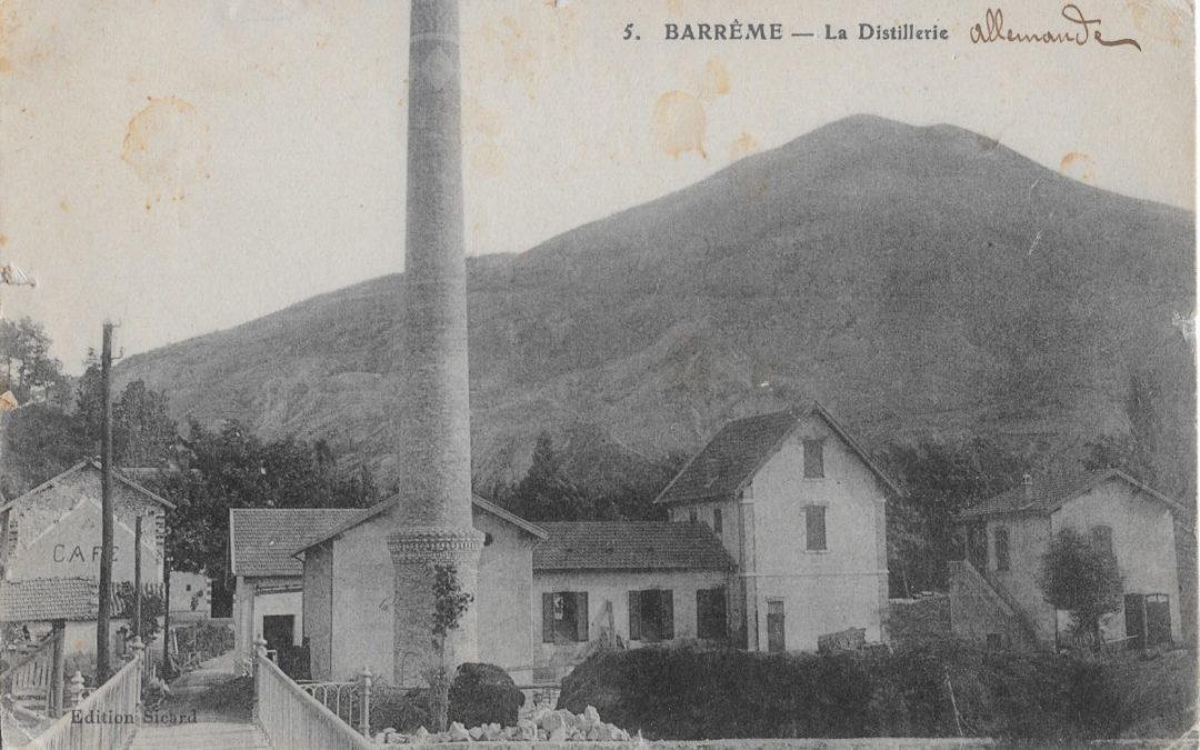Barreme distilleries and fine lavender in Haute Provence